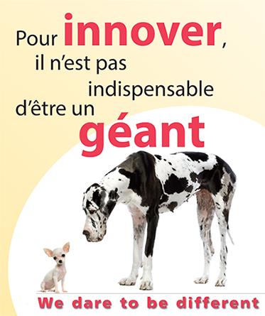 Innover Le Sanglier